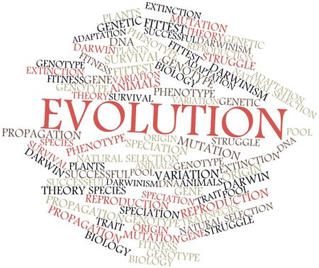 darwinism: Abstract word cloud for Evolution with related tags and terms
