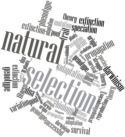 trait: Abstract word cloud for Natural Selection with related tags and terms