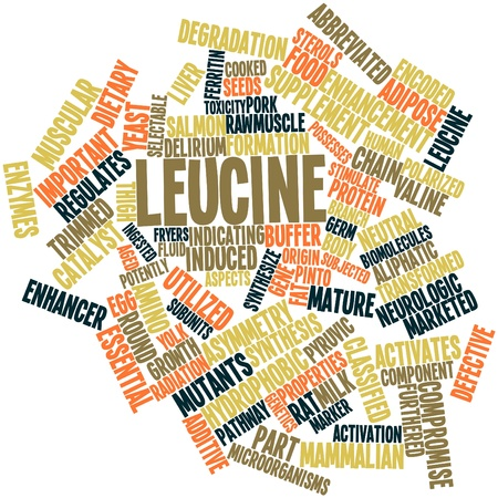 Abstract word cloud for Leucine with related tags and terms Stock Photo - 15996235