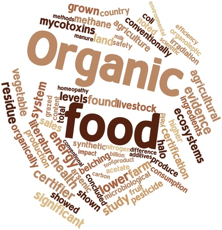 Abstract word cloud for Organic food with related tags and terms Stock Photo - 15995833
