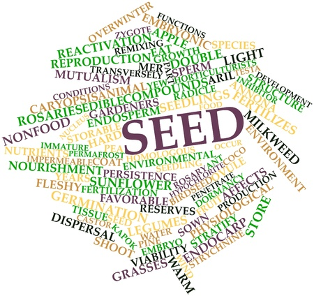 occur: Abstract word cloud for Seed with related tags and terms Stock Photo
