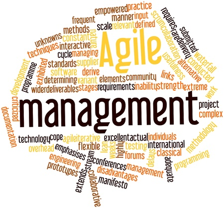 deliverables: Abstract word cloud for Agile management with related tags and terms