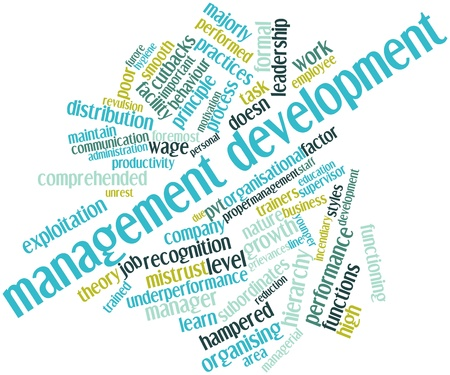 Abstract word cloud for Management development with related tags and terms Stock Photo - 15996498