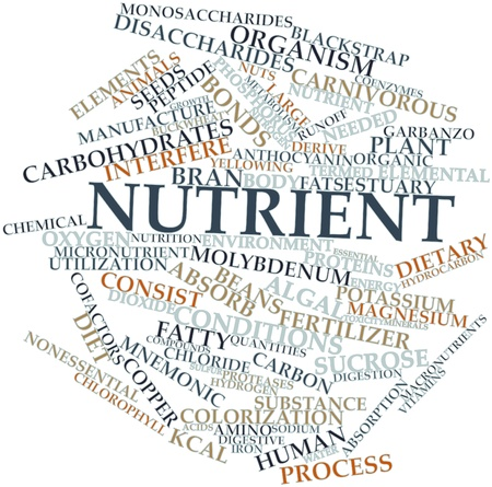 derive: Abstract word cloud for Nutrient with related tags and terms