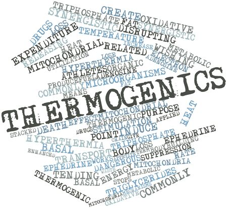 stimulation: Abstract word cloud for Thermogenics with related tags and terms