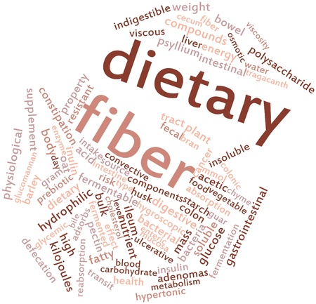 Abstract word cloud for Dietary fiber with related tags and terms photo
