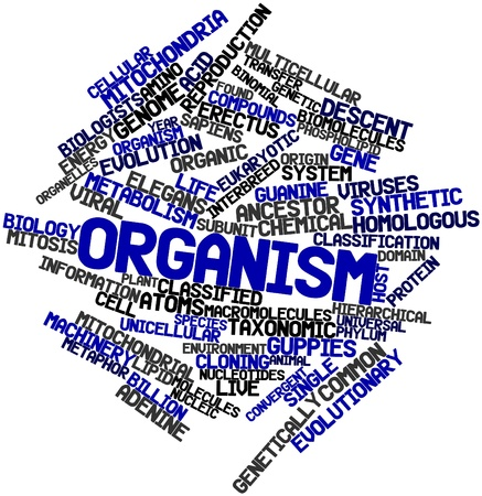 Abstract word cloud for Organism with related tags and terms Stock Photo - 16047855