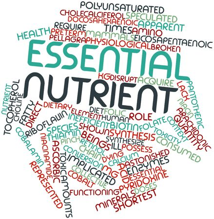 enzymes: Abstract word cloud for Essential nutrient with related tags and terms Stock Photo