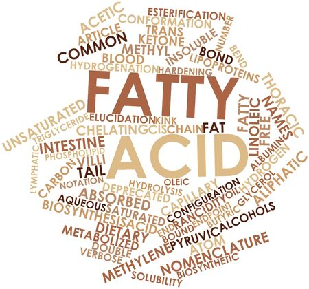 Abstract word cloud for Fatty acid with related tags and terms Stock Photo - 16048666
