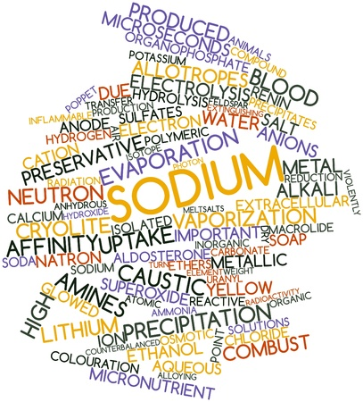 poppet: Abstract word cloud for Sodium with related tags and terms