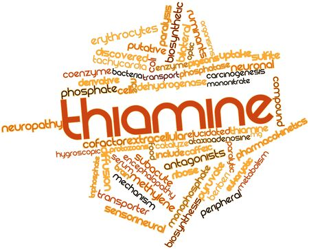 food absorption: Abstract word cloud for Thiamine with related tags and terms