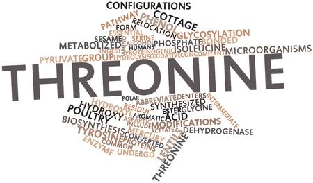 concomitant: Abstract word cloud for Threonine with related tags and terms Stock Photo