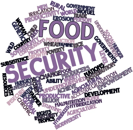 rural development: Abstract word cloud for Food security with related tags and terms Stock Photo