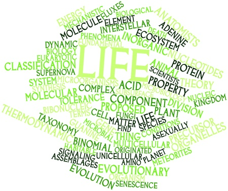 taxonomy: Abstract word cloud for Life with related tags and terms Stock Photo