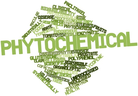 metabolic: Abstract word cloud for Phytochemical with related tags and terms
