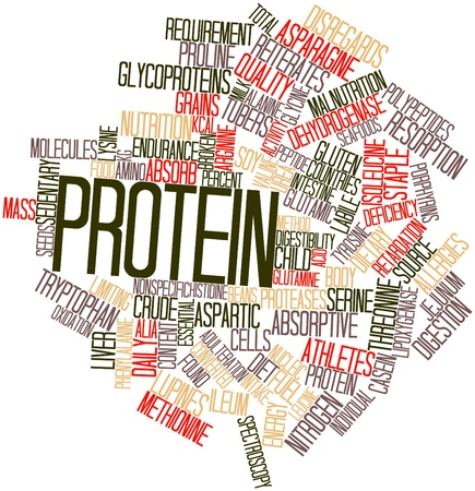 seafoods: Abstract word cloud for Protein with related tags and terms Stock Photo