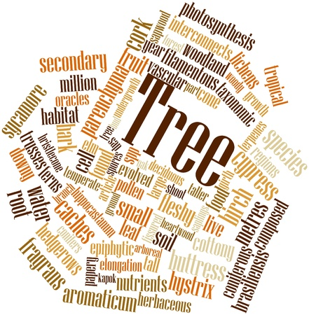 Abstract word cloud for Tree with related tags and terms Stock Photo - 16414037