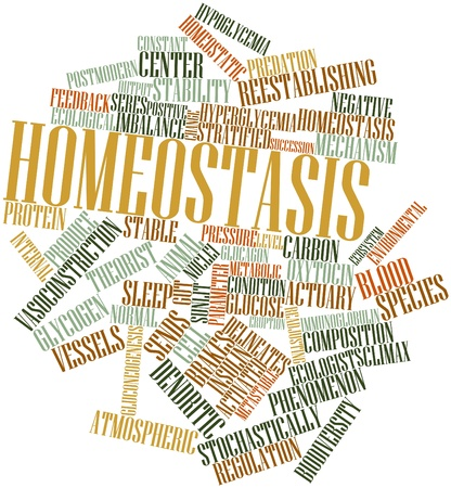 glucagon: Abstract word cloud for Homeostasis with related tags and terms Stock Photo