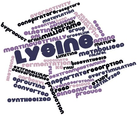 ful: Abstract word cloud for Lysine with related tags and terms Stock Photo