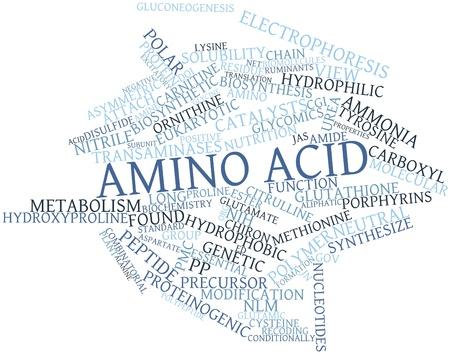 amoniaco: Nube palabra abstracta por amino�cidos con las etiquetas y t�rminos relacionados