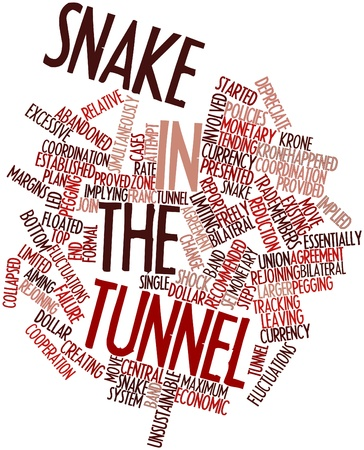 Abstract word cloud for Snake in the tunnel with related tags and terms Stock Photo - 16446054