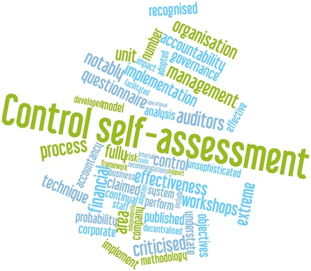 assessment system: Abstract word cloud for Control self-assessment with related tags and terms