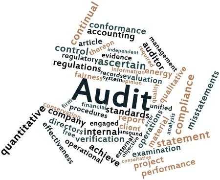 registros contables: Nube de palabras Resumen de Auditoría con las etiquetas y términos relacionados