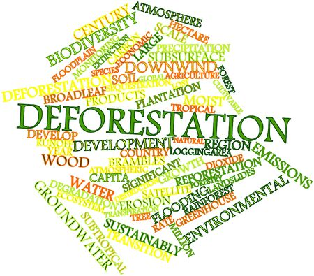 forest conservation: Abstract word cloud for Deforestation with related tags and terms Stock Photo