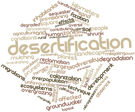 affected: Abstract word cloud for Desertification with related tags and terms Stock Photo