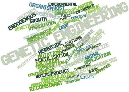 Abstract word cloud for Genetic engineering with related tags and terms photo