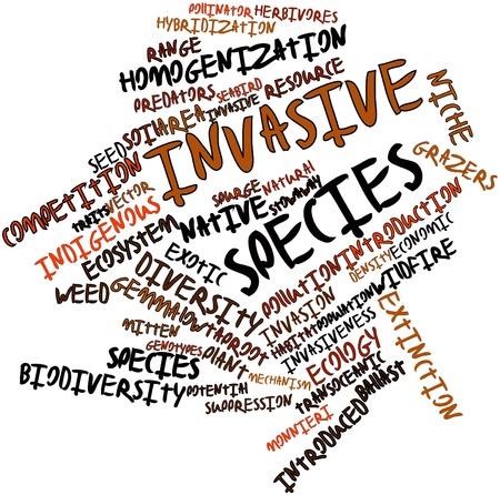 plants species: Word cloud astratto per le specie invasive con tag correlati e termini