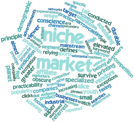 marketers: Abstract word cloud for Niche market with related tags and terms