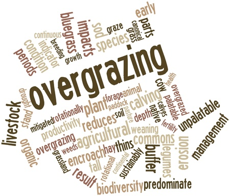 Abstract word cloud for Overgrazing with related tags and terms