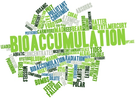 algal: Abstract word cloud for Bioaccumulation with related tags and terms Stock Photo
