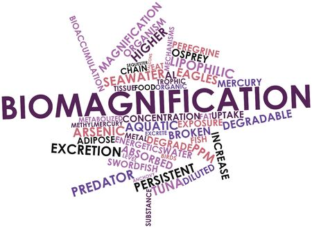 excrete: Abstract word cloud for Biomagnification with related tags and terms Stock Photo