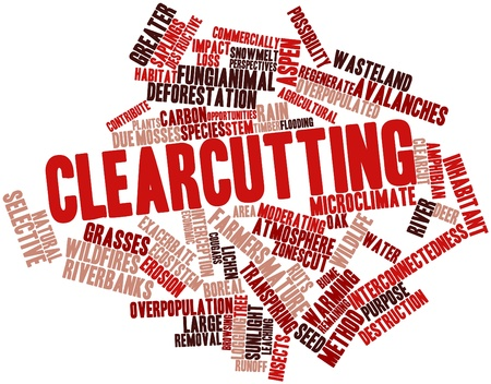 deforestation: Abstract word cloud for Clearcutting with related tags and terms