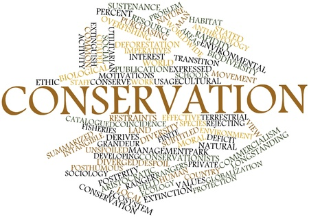 Abstract word cloud for Conservation with related tags and terms photo