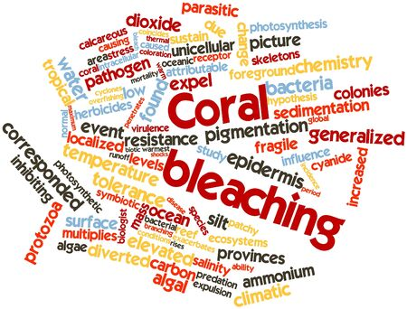 Abstract word cloud for Coral bleaching with related tags and terms Stock Photo - 16498752