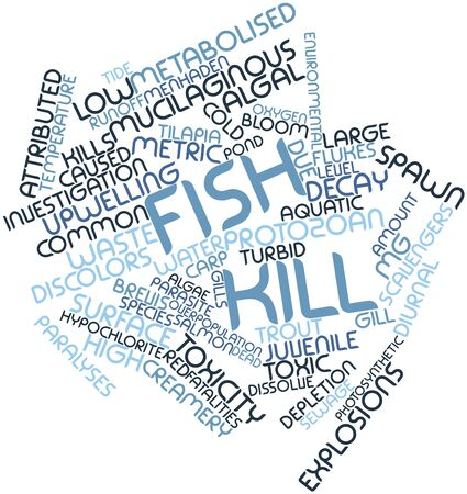tons: Abstract word cloud for Fish kill with related tags and terms Stock Photo