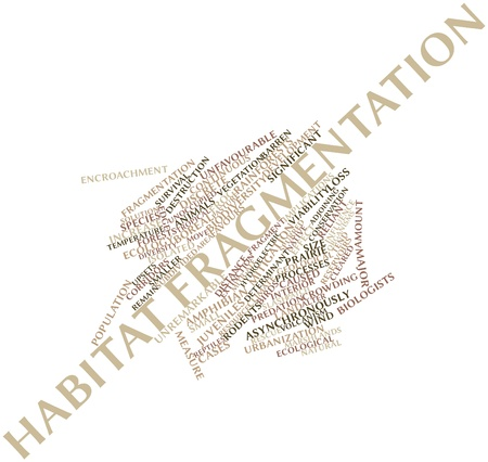 determinant: Abstract word cloud for Habitat fragmentation with related tags and terms