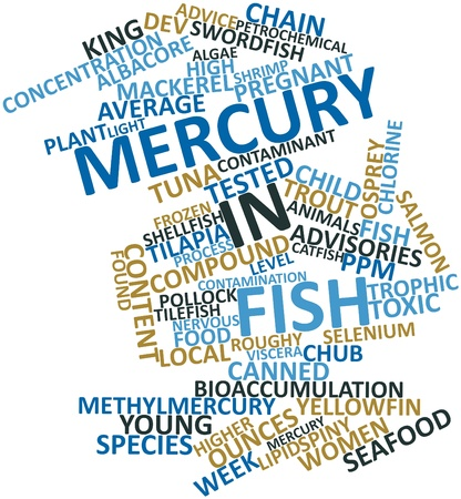 food poison: Abstract word cloud for Mercury in fish with related tags and terms