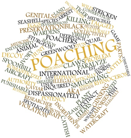 poach: Abstract word cloud for Poaching with related tags and terms