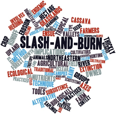 upland: Abstract word cloud for Slash-and-burn with related tags and terms