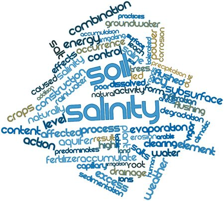 detrimental: Abstract word cloud for Soil salinity with related tags and terms Stock Photo