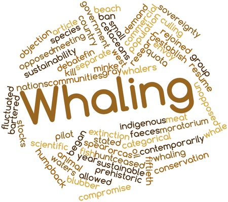 Abstract word cloud for Whaling with related tags and terms photo