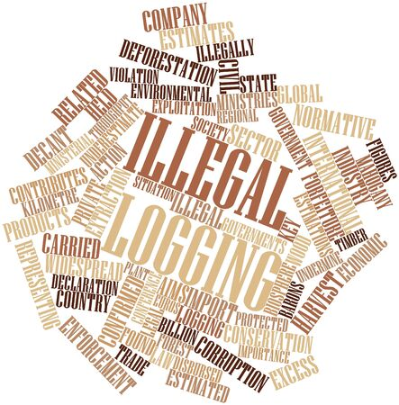 preparatory: Abstract word cloud for Illegal logging with related tags and terms