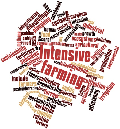 Abstract word cloud for Intensive farming with related tags and terms Stock Photo - 16499203