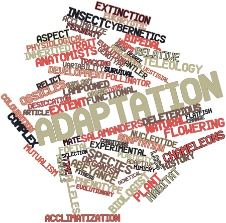 Abstract word cloud for Adaptation with related tags and terms Stock Photo - 16499215
