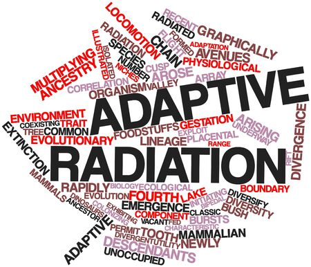 descendants: Abstract word cloud for Adaptive radiation with related tags and terms Stock Photo