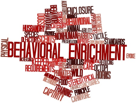 Abstract word cloud for Behavioral enrichment with related tags and terms Stock Photo - 16498675